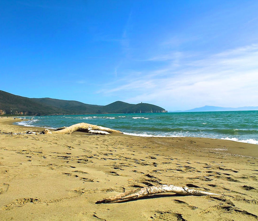 maremma beaches collelungo