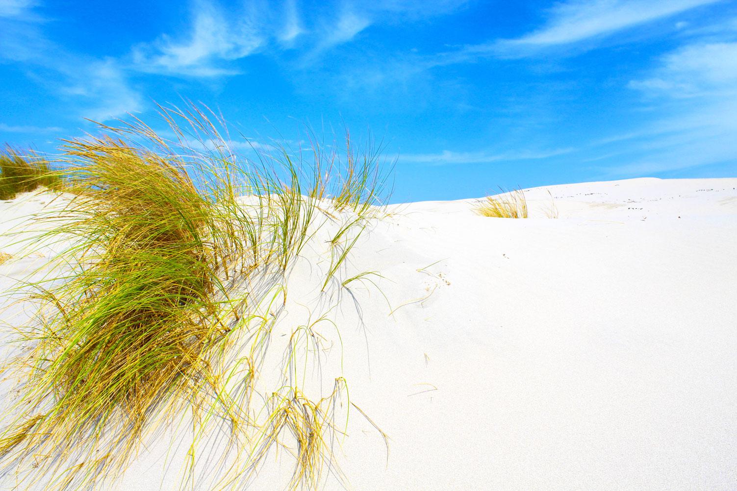 Best Beaches near Cagliari - Is Arenas Biancas